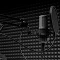 Вокал/Акапеллы/Написание текстов песен от Irin Muse